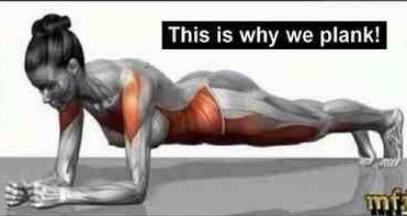 whyweplank